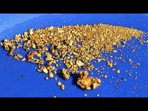 How to find lot of GOLD!  Gold panning digger