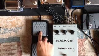 BLACK CAT ring modulator