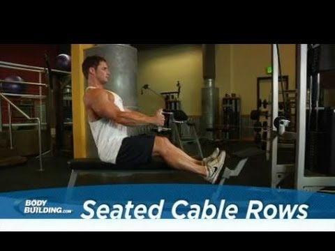 Seated Cable Rows - Back Exercise - Bodybuilding.com