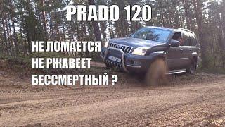 Обзор toyota land cruiser prado 120 3.0 TD | не такой он и бессмертный