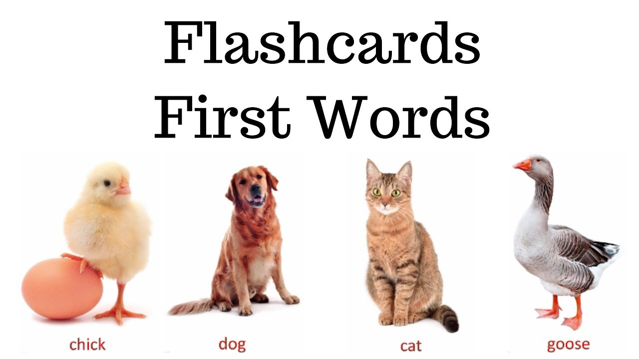 Flashcards First Words For Babies Toddlers Prek K Pets And Farm Animals