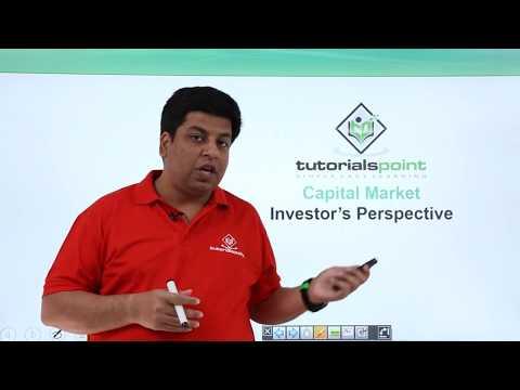 Capital Market   Investors Perspective