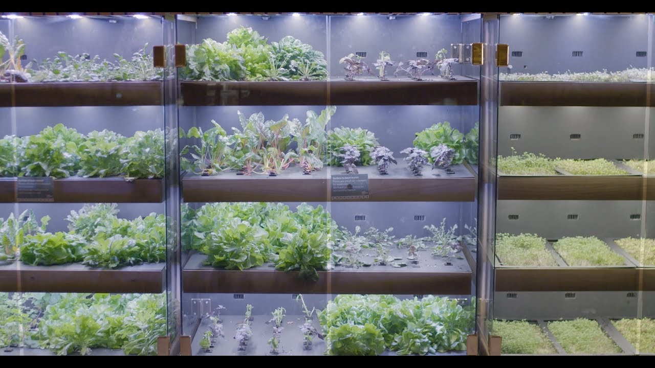 Farmshelf: Cost-effective custom parts for urban farming