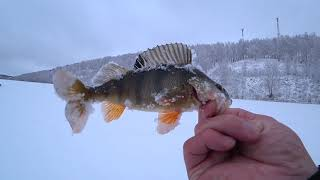 о.Инголь Рыбалка пошла не по плану а утром выпал снег...