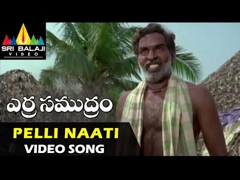 Erra Samudram Songs | Pelli Naati Video Song | Narayana Murthy | Sri Balaji Video