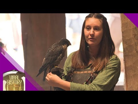 Dark Age Falconry, Viking & Anglo-Saxon Methods Of Hunting & Ritual With Birds Of Prey