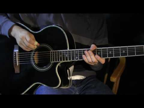 Hummingbird Guitar Lesson - Seals and...