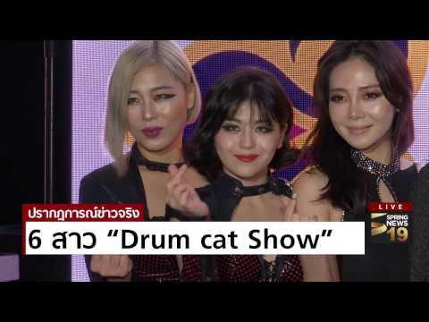 """6 สาว """"Drum cat Show"""" - Springnews"""