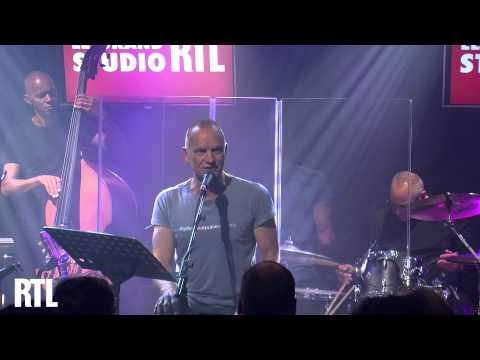Sting - Practical Arrangement en live dans le Grand Studio RTL