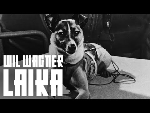 Wil Wagner - Laika (Fan Video)