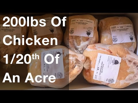 200lbs Of Chicken On 1/20th Of An Acre