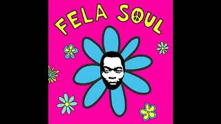 Fela Soul - Trouble In the Water [Instrumental] (Prod. Amerigo Gazaway)