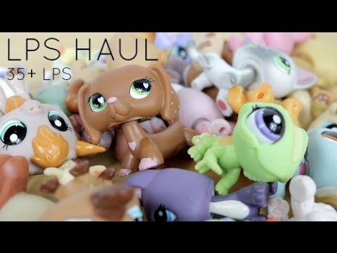 {LPS Haul} 35+ LPS and Accessories!