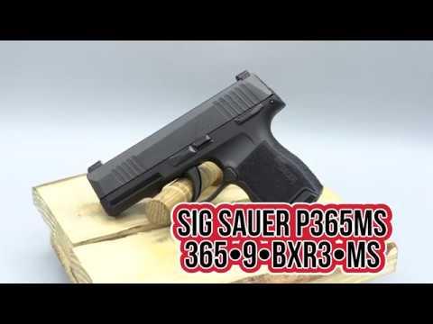 Sig Sauer P365MS Spotlight