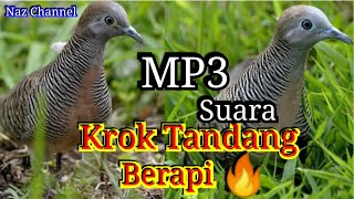 Suara (Mp3) Burung Merbuk Kampung 2019