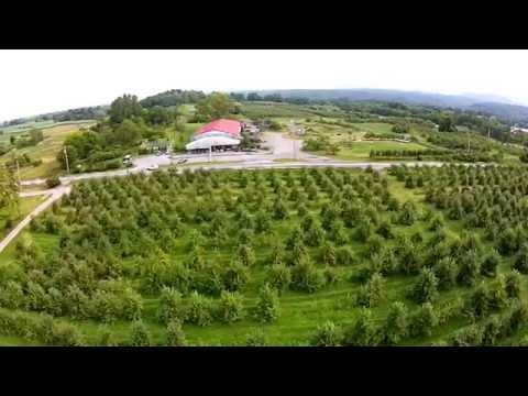 Saratoga Apple, Schuylerville New York