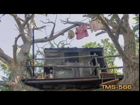 Youtube Tom And Huck's Tree House