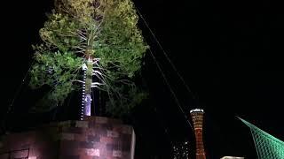 ネットで炎上!神戸の世界一のクリスマスツリー見てきた!