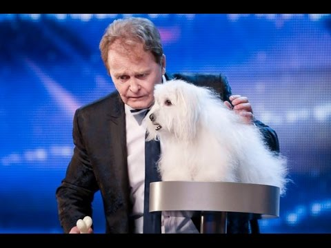 TOP 10 Amazing Ventriloquist Acts Auditions Got Talent