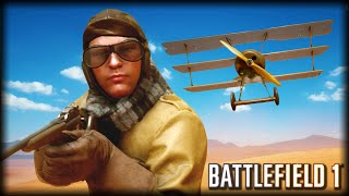 The Unfortunate Moments of BATTLEFIELD 1 (Open Beta! Funny glitches and Airplane Fails!)
