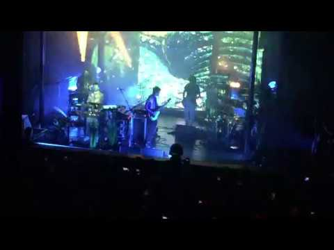 MGMT-Electric Feel (Live Clip)