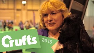 Best Of Breed - English Cocker Spaniel And Winner's Interview  | Crufts 2015