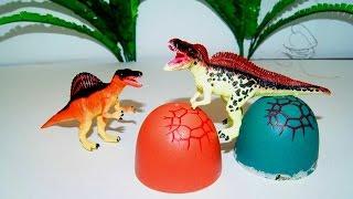 Крутые яйца. Динозавры. Игрушки видео. Мультик для детей