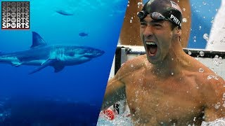 Michael Phelps to Race a Great White Shark During Shark Week