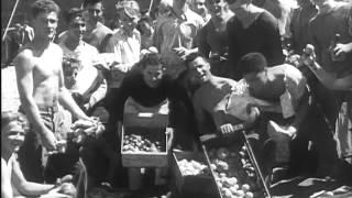 [newsreel: Collegians Wage Vegetable War] (1930s)