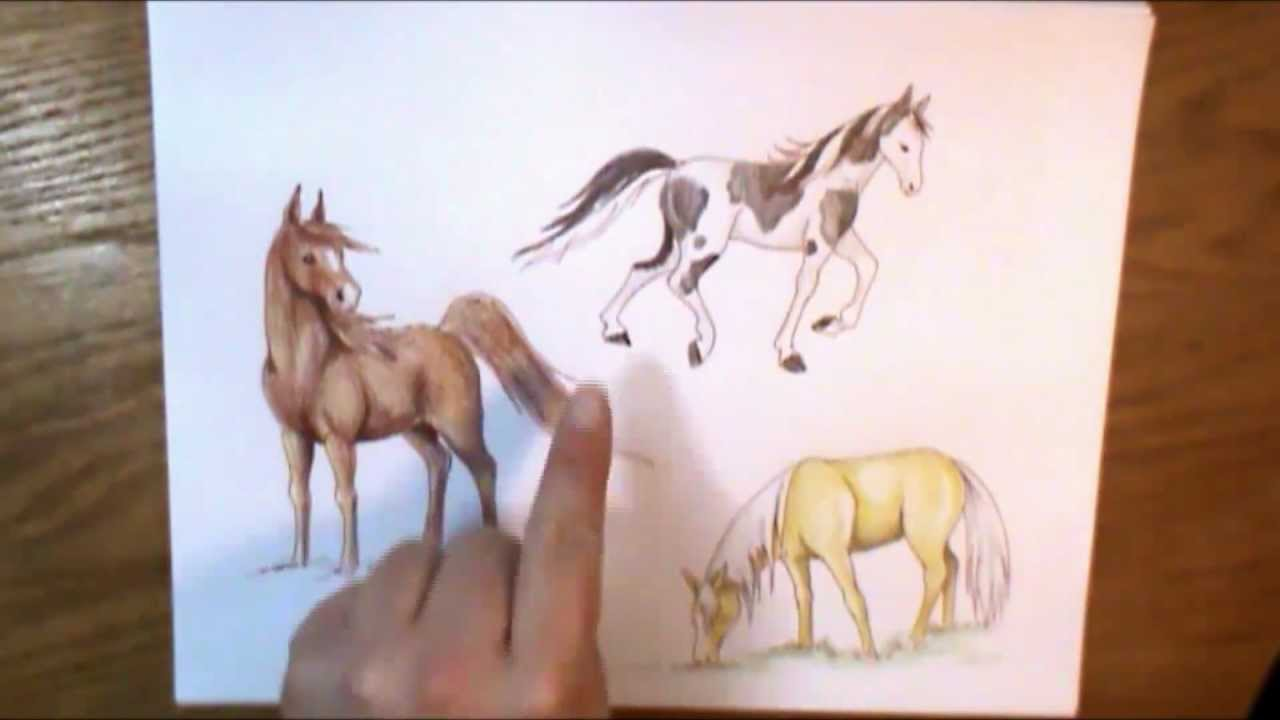 How To Color A Horse Youtube