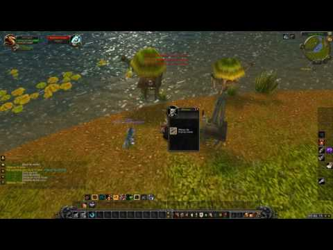 world of warcraft ROAD TO 100 #2 ¿video diario? ^^