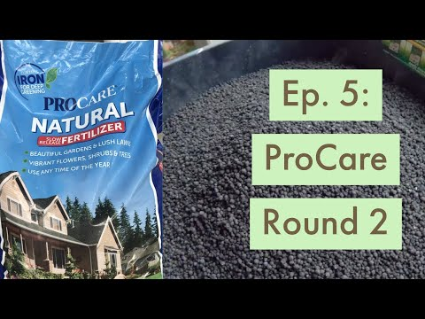 Project SIDE LAWN Ep  5: Memorial Day ProCare App - YouTube