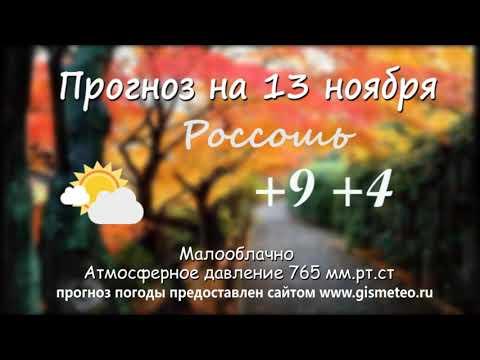 Прогноз погоды на 13.11.2019, Блокнот Россоши
