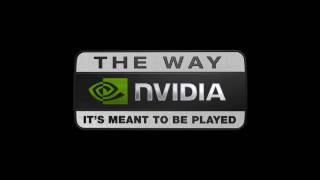 NVIDIA: The Way It