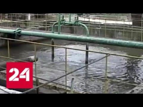Украина начала импортировать из Румынии жидкий хлор для обеззараживания воды - Россия 24