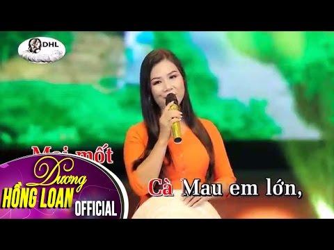 Karaoke | Áo Mới Cà Mau | Dương Hồng Loan