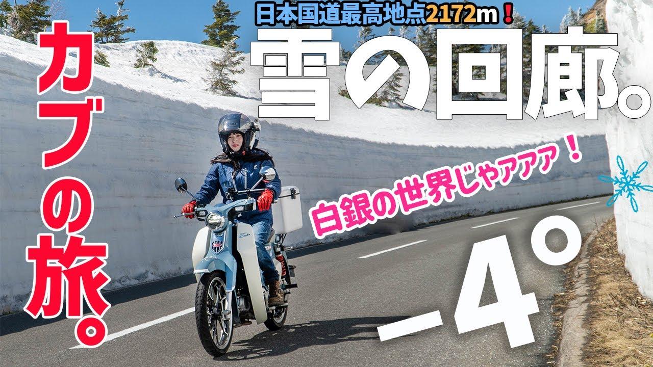【標高2172m!?】スーパーカブC125で雪の回廊を駆け抜けて来ました!バイク女子