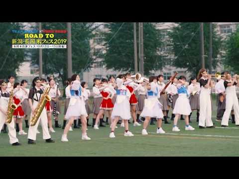 【9月19日に公開!】未来へつなげ! TEAM SHACHI x 中越高等学校吹奏楽部 Special Collaboration Teaser