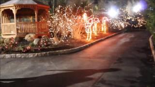 Holiday Lights at the Zoo