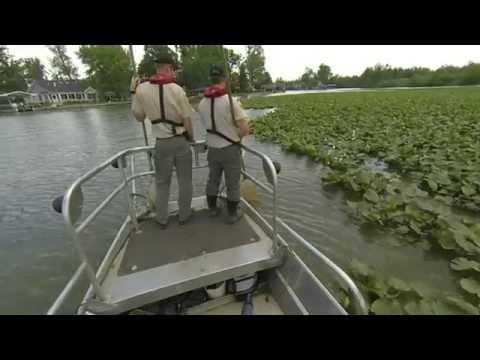 ODNR Electro-Shocking Boat-Indian Lake, Ohio