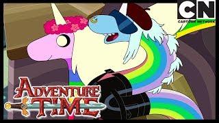 Время приключений | Леди Ливнерог и Кристальное Измерение | Cartoon Network