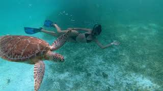 Belize Adventure Tours at Grand Caribe
