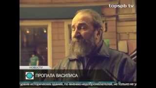 Кошка Василиса похищена в день инаугурации Г.Полтавченко, рассказал историк Сергей Лебедев.