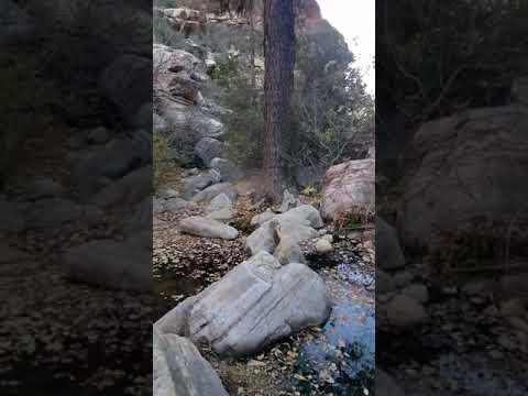 Mountain View Pine Creek Trail. Red Rock .