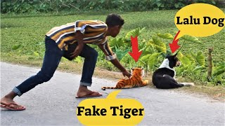 Fake Tiger Prank🐯TRY TO NOT LAUGH CHALLENGE🐯🐯MUST WATCH NEW PRANK 2020 PART 9 vs Dog | Comedy Video