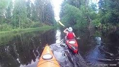 Kuorevesi Kertejoki kajakki 2