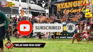 """Download Lagu """"Welas Hang Reng Kene"""" Cover Mayangkoro Original Live Ds Tengger"""