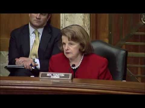 Senate Drug Caucus: Dangerous Synthetic Drugs