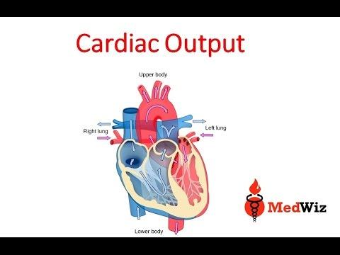 Cardiac Output Suomeksi