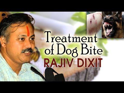 Best Homeopathy & Ayurvedic Treatment Of Dog Bite by Rajiv Dixit
